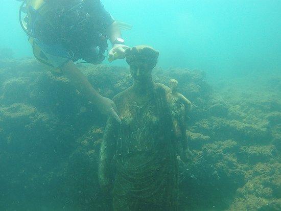 Centro Sub Campi Flegrei: Marine life