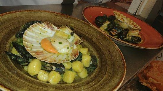 Costiera - Cucina di Mare & Pizzeria - Bild von Costiera - Cucina di ...