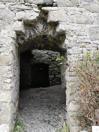 Roslee Castle Photo