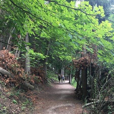 Rockwood Conservation Area: photo7.jpg