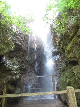 Foxfire Mountain Adventures Photo
