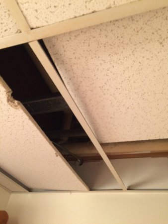 Mittersill Alpine Resort: Bathroom ceiling...