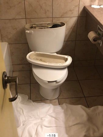 Hotel Le President: toilet overflowed and and our towels we had to use that we needed