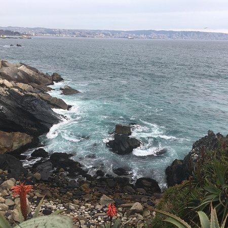 Roca Oceanica: photo3.jpg