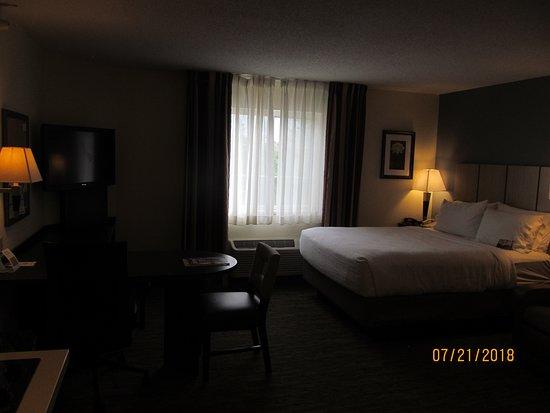 Candlewood Suites Detroit/Warren: Room #229.