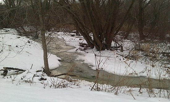 Creek Along Eastern Segment of Vestal Rail Trail in Winter