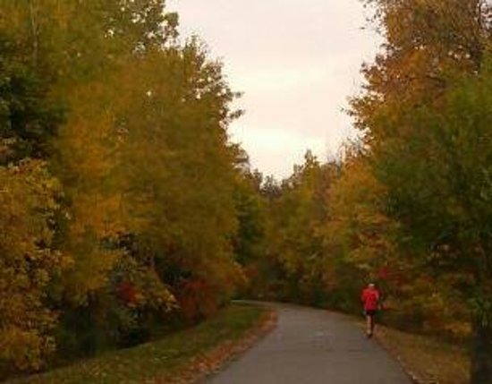 A Jogger Runs along the Eastern Section of the Vestal Rail Trail In Autumn