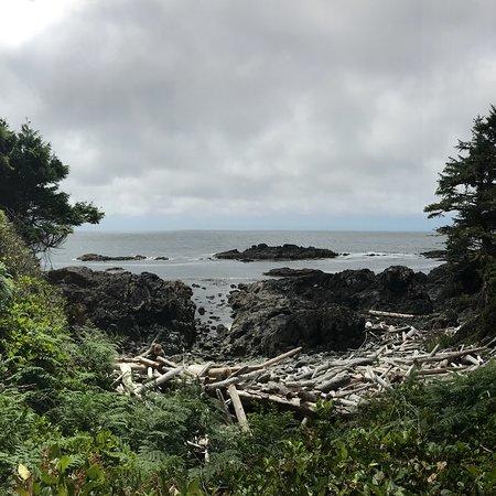 写真Wild Pacific Trail枚