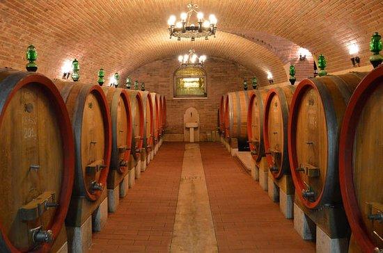 Pagus Wine Tours - Duas vinícolas...