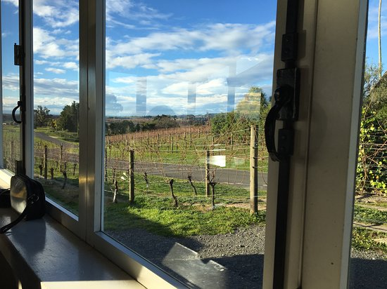 Havelock North, Nouvelle-Zélande : View from the restaurant