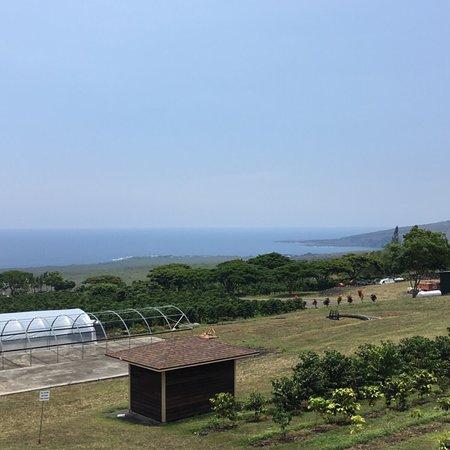 Bay View Farm Foto