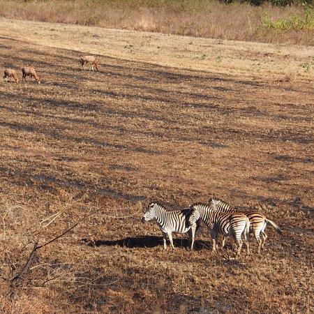 Mlilwane Wildlife Sanctuary, Eswatini (Swaziland): photo0.jpg