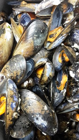 IASC Restaurant: Marty's Mussels