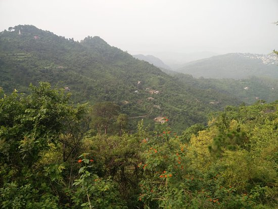 The Sirmour Retreat: trek to jaitak fort from the resort