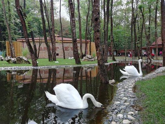 Uzuntarla Tabiat Parki