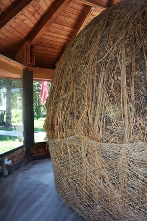 Darwin, MN: Best view I could get of the Twine Ball.