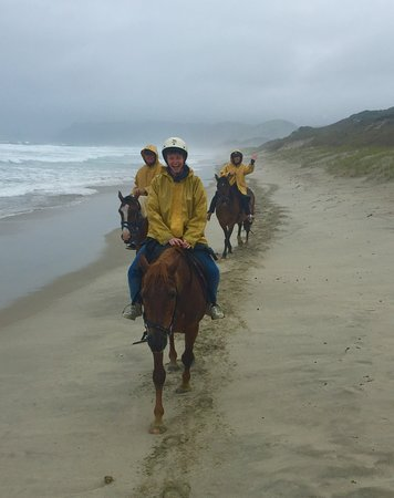 Wellsford, New Zealand: Horseback ride