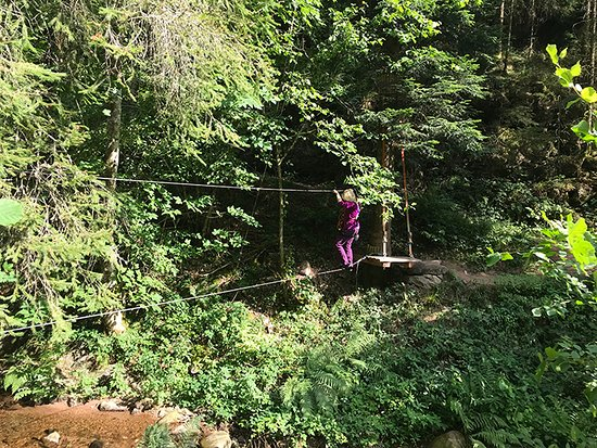 Hirschgrund - Zipline Area Schwarzwald: Better view of the tight rope over the river.