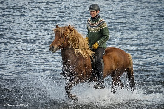 Holmavik, Islandia: Riding the beaches of Hólmavík