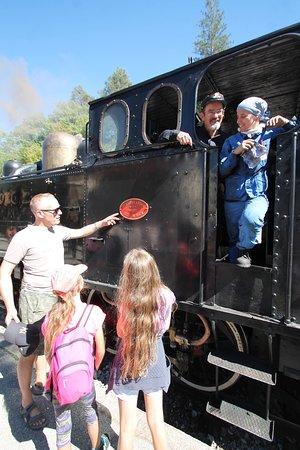 Train des Pignes a Vapeur