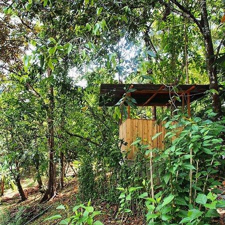 Baru, Costa Rica: compost toilet