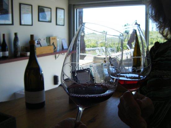Norman Hardie Winery and Vineyard : Enjoying samples of wine