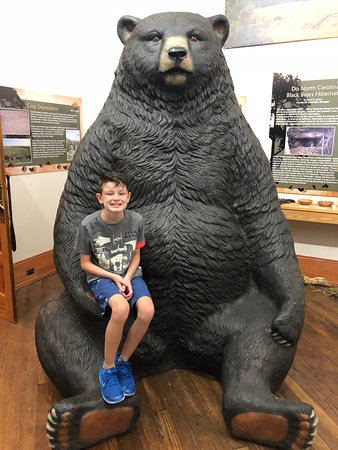 Plymouth, Северная Каролина: Did you ever sit on a bear's lap? My son did at Bear-Ology!