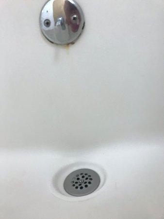 Rusty, moldy drain lever