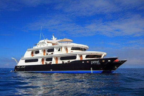 Haugan Cruises