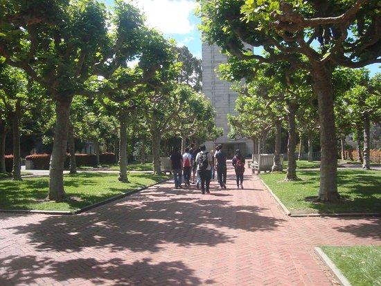 College Plaza-bild