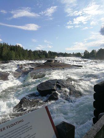 Norrbotten County, Swedia: IMG_20180723_190726_large.jpg