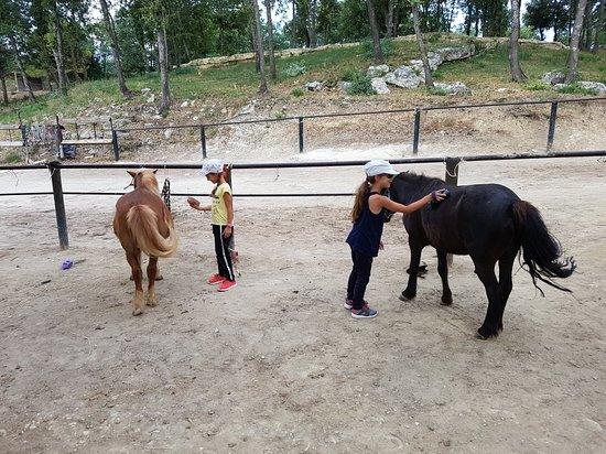 Centre Equestre Des Chimères