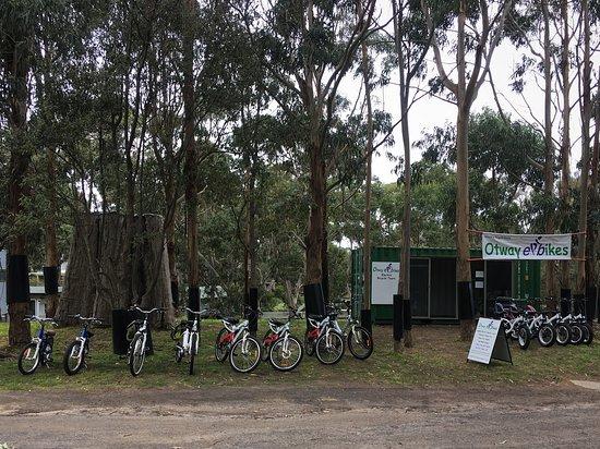 Otway e bikes - Inside Bimbi Park 90 Manna Gum Drv Cape Otway Cape Otway