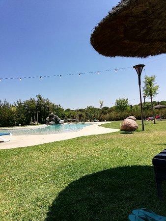 Ardea Purpurea Lodge: IMG_20180721_151009_large.jpg
