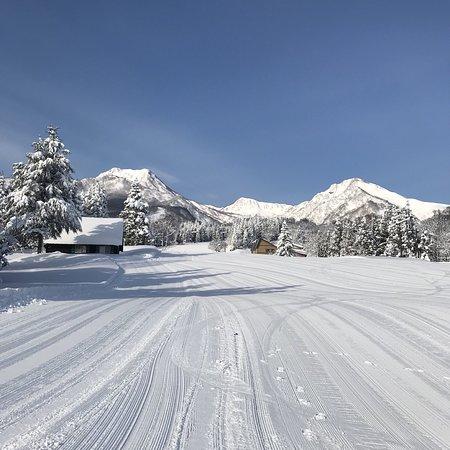 素晴らしい雪質