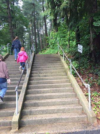 Kutztown, PA: The first set of stairs to the cave.