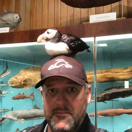 Foto de SEA LIFE Trust Beluga Whale Sanctuary