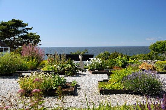 Krysmyntagården: Utsikt från uteserveringen