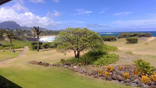 The Point at Poipu: The picture really understates the ocean view. It is much nicer in real life.