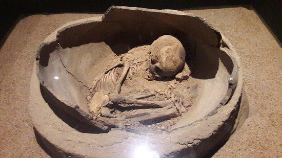 Sao Raimundo Nonato, PI: Esqueleto