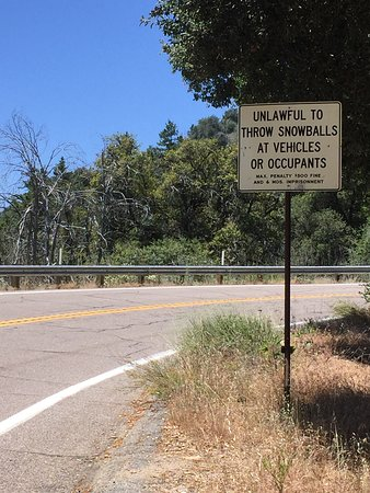 Palomar Mountain, CA: Sign on the way up. Funny at about 90 degrees.