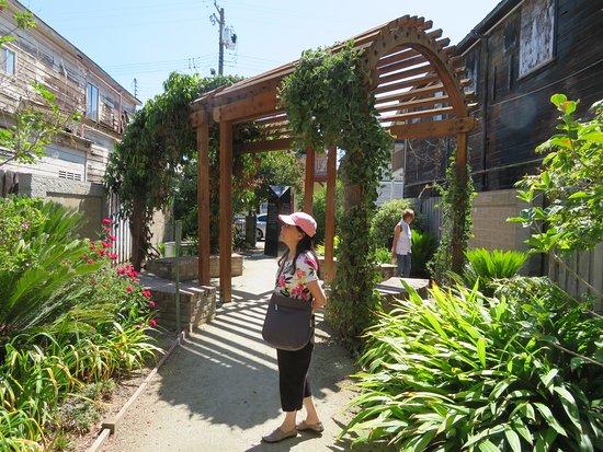 Walnut Grove, Califórnia: Garden Trellis