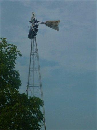 Dayton, VA: Windmill near the B&B
