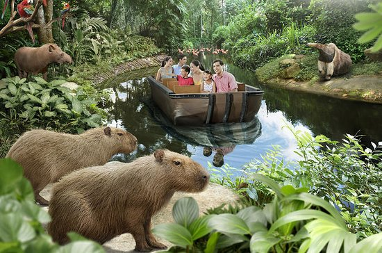River Safari Experience and Rainforest Lumina ticket