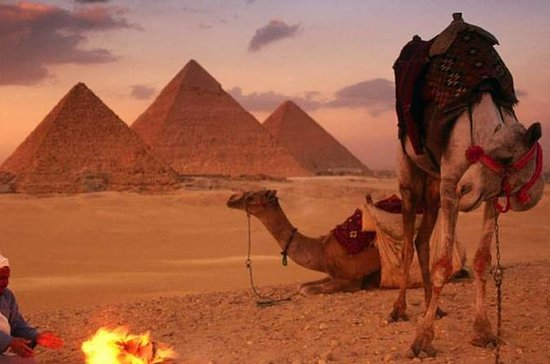 Private Experienced Tour for Camel...