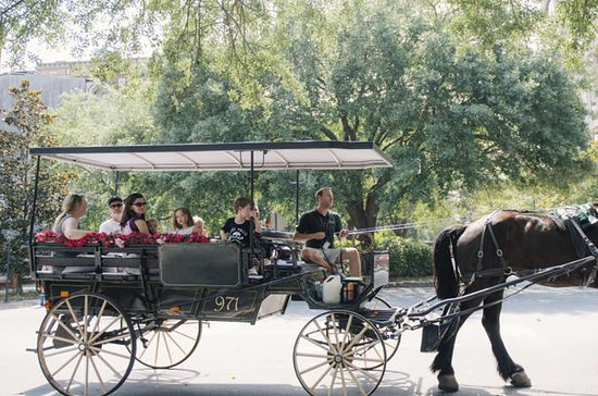 Horse & Carriage and Haunted City...