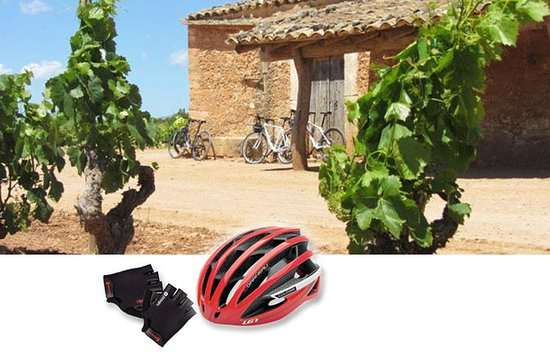 WINE & BIKE HALF DAY TOUR IN THE...