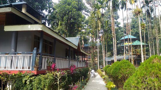 Best place to stay in lataguri
