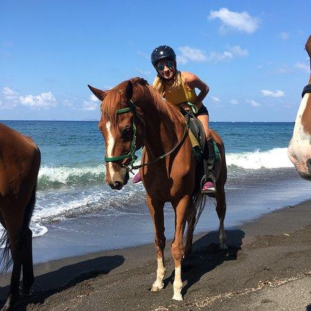 Vlychada, Grekland: Μοναδική εμπειρία, φοβεροί κ ευγενέστατοι άνθρωποι, απίστευτα άλογα!!!!!💙💙💙💙 Gazaldo Noae Os