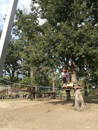 Parco Viviavventura (22/07/2018)